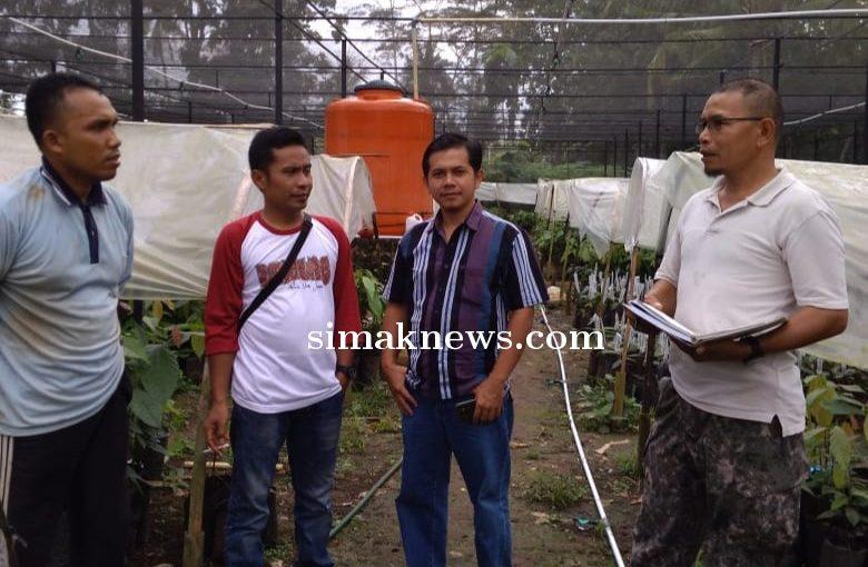 Tekad Agus Trijoko Kembalikan Kejayaan Petani Kakao Lampung Timur