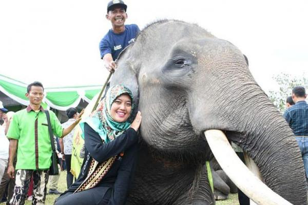 Peduli Pariwisata Antarkan Chusnunia Chalim Jabat Ketua